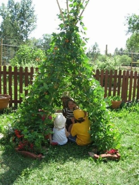 Honey, We Blew Up The Tomato Trellis And The Kids Claimed It As Their Teepee.  Seriously, Is There Anything Cuter Than This?!