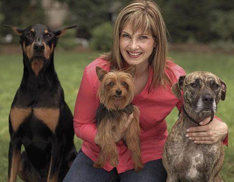 Smart Dogs - Dog Training - Dog Behavior