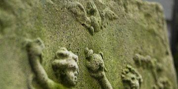 mossy garden plaque