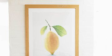 entry way with lemon photograph