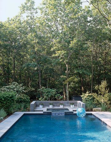 swimming pool surrounded by trees