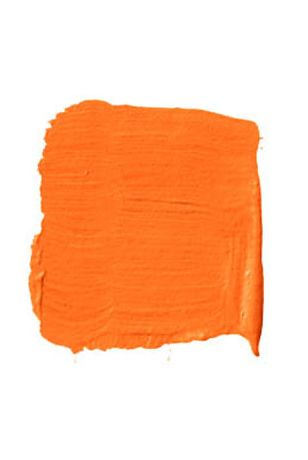 Bright Orange Paint Swatch