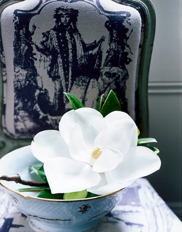 magnolia in a bowl on a chair