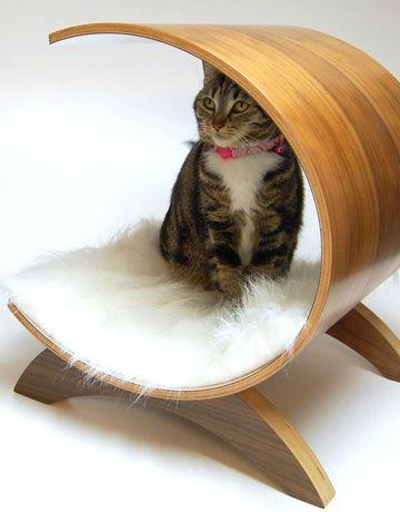 Etonnant Pod Cat Condo