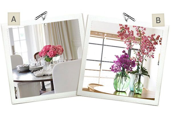 Would You Rather: Hydrangeas or Orchids