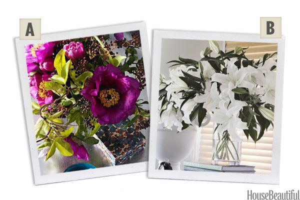 Would You Rather: Anemones or Lilies?