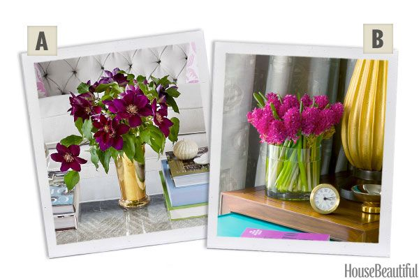 Would You Rather: Clematis or Hyacinths?