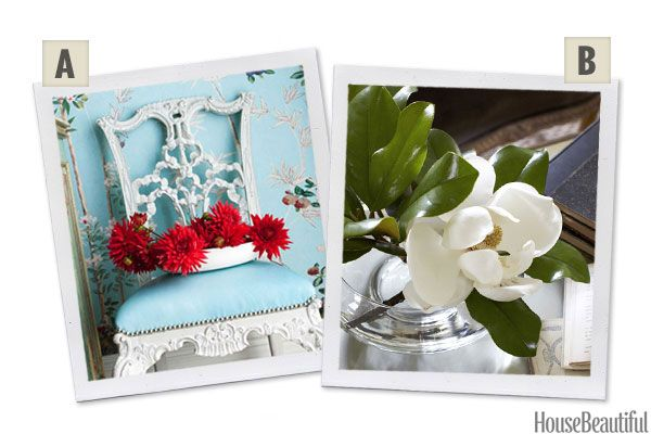 Would You Rather: Dahlias or Magnolias?