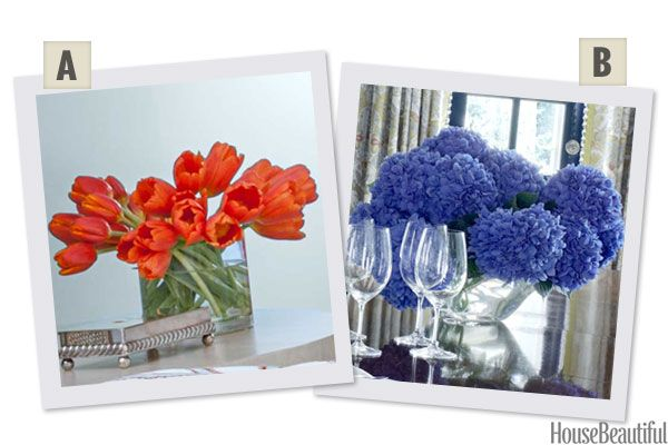 Would You Rather: Tulips or Hydrangeas?