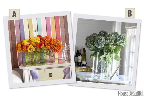 Would You Rather:Anemones or Hydrangeas?