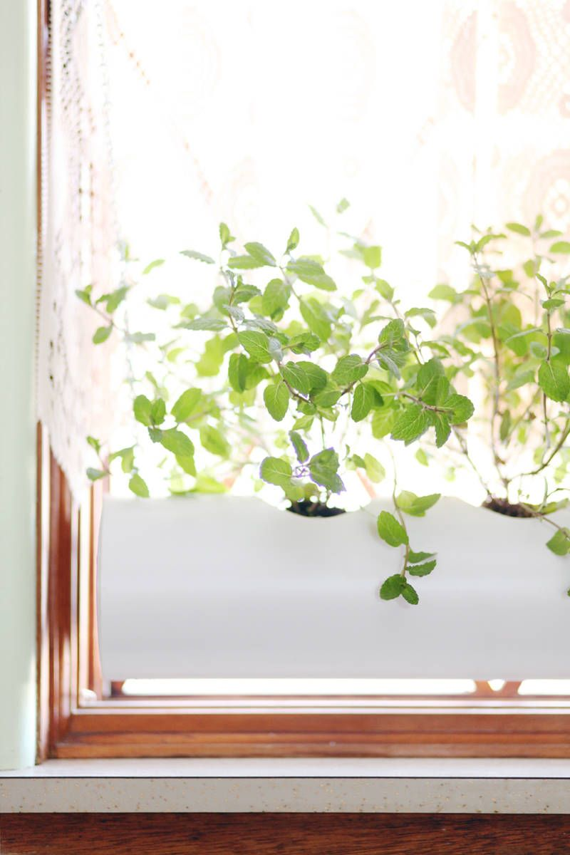Indoor Window Sill Herb Planter Part - 19: House Beautiful
