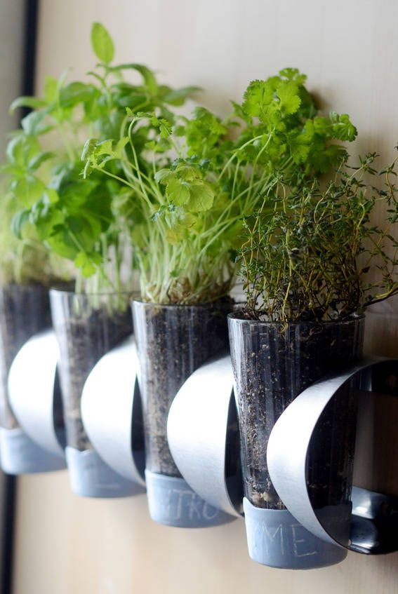 Indoor Herb Planter Gorgeous 15 Indoor Herb Garden Ideas  Kitchen Herb Planters Decorating Inspiration