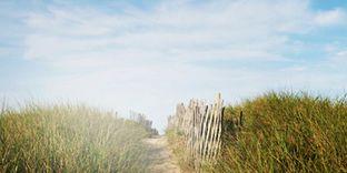 Midsummer's Dream: A Weekend Getaway to Nantucket