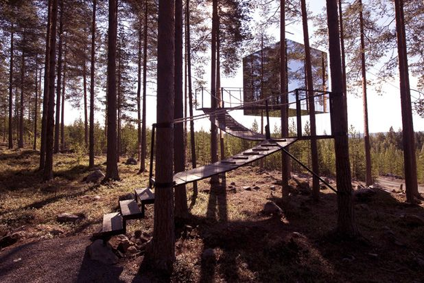 This Hotel Takes the Treehouse to the NEXT Level