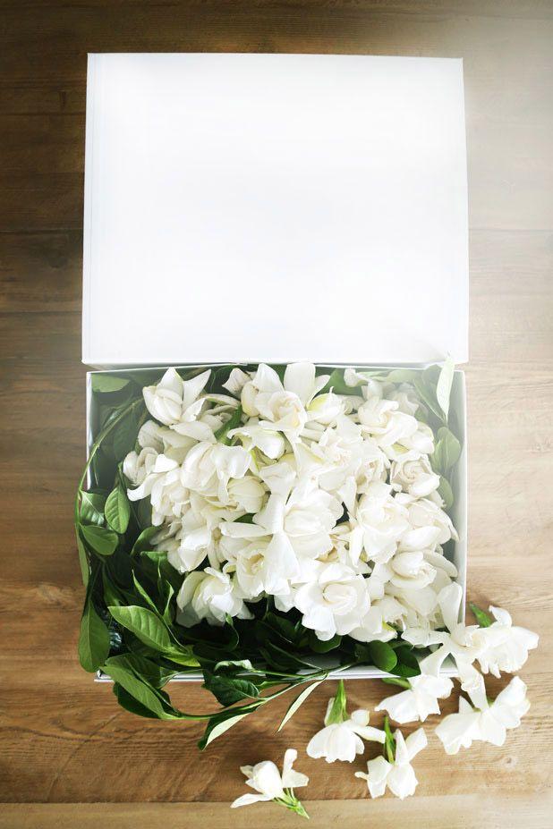 How to Get Luxury Blooms Delivered to Your Door