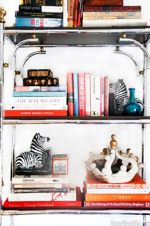 Zebra, Shelving, Shelf, Publication, Collection, Book,