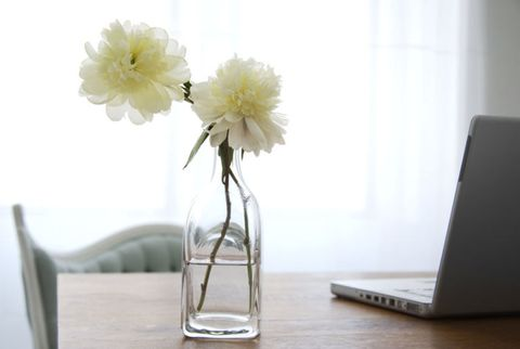 peonies vase