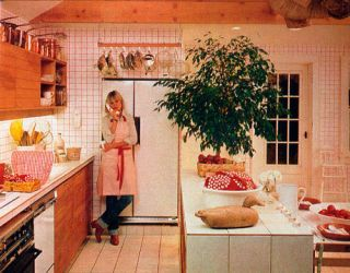 Cottage Kitchens Kitchens Of The 1970s