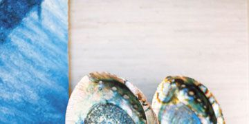 blue abalone shells on finials