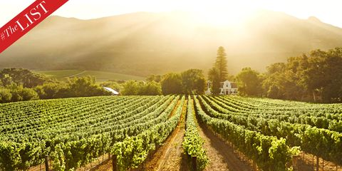 The Culture List - Wine Spots in South Africa