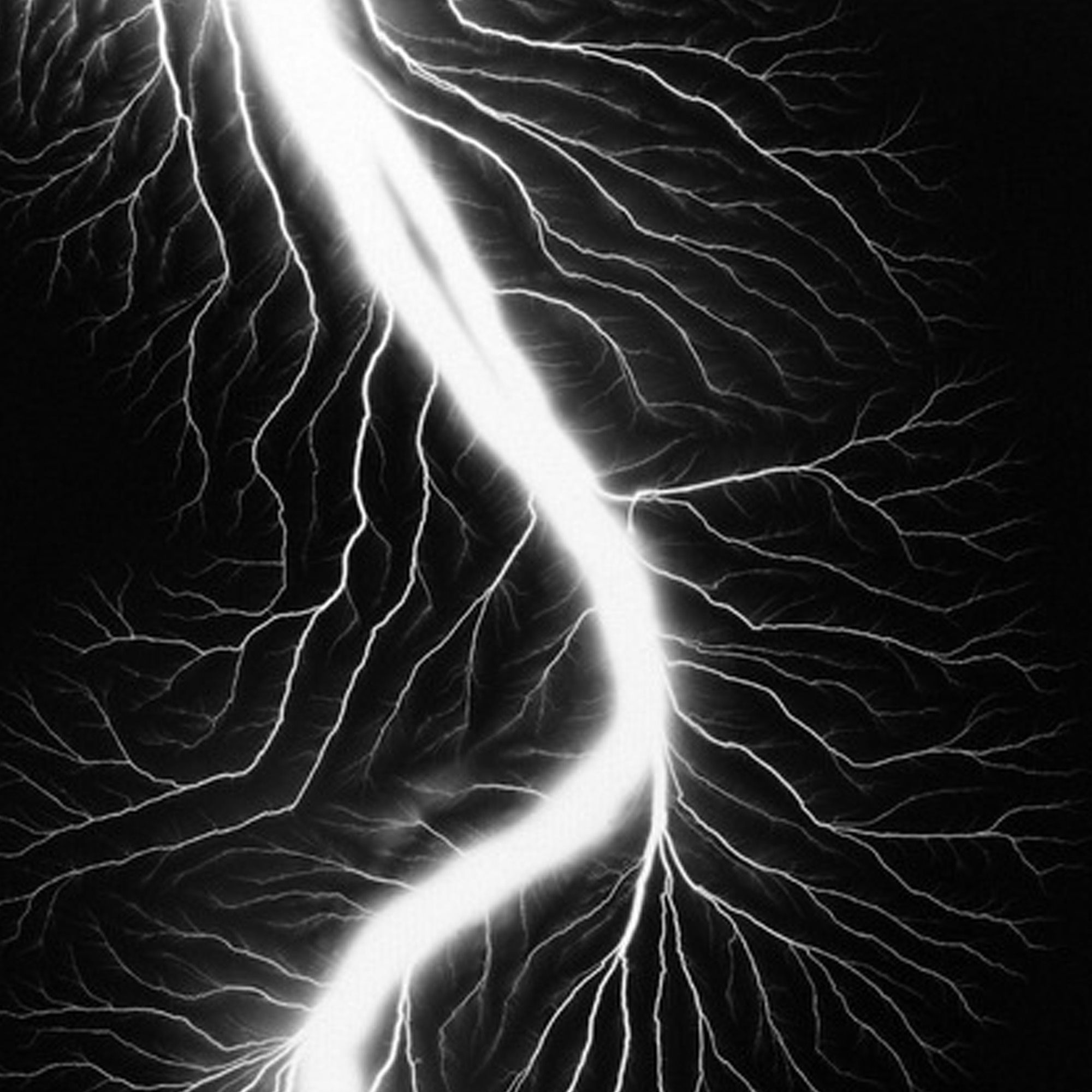 """The Lightning Field photographs of <a target=""_blank"" href=""http://www.sugimotohiroshi.com/"">Hiroshi Sugimoto</a> have such energy and add dramatic tension to a room."""