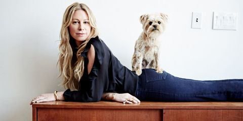 Dog breed, Dog, Carnivore, Comfort, Toy dog, Companion dog, Terrier, Hardwood, Small terrier, Fur,