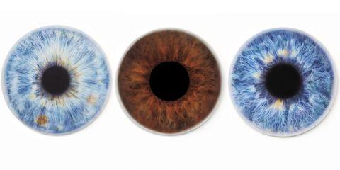 Blue, Colorfulness, Brown, Eyelash, Iris, Amber, Organ, Azure, Circle, Electric blue,