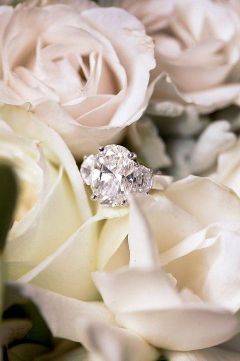 Petal, Flower, White, Pink, Flowering plant, Garden roses, Bouquet, Cut flowers, Rose family, Rose order,