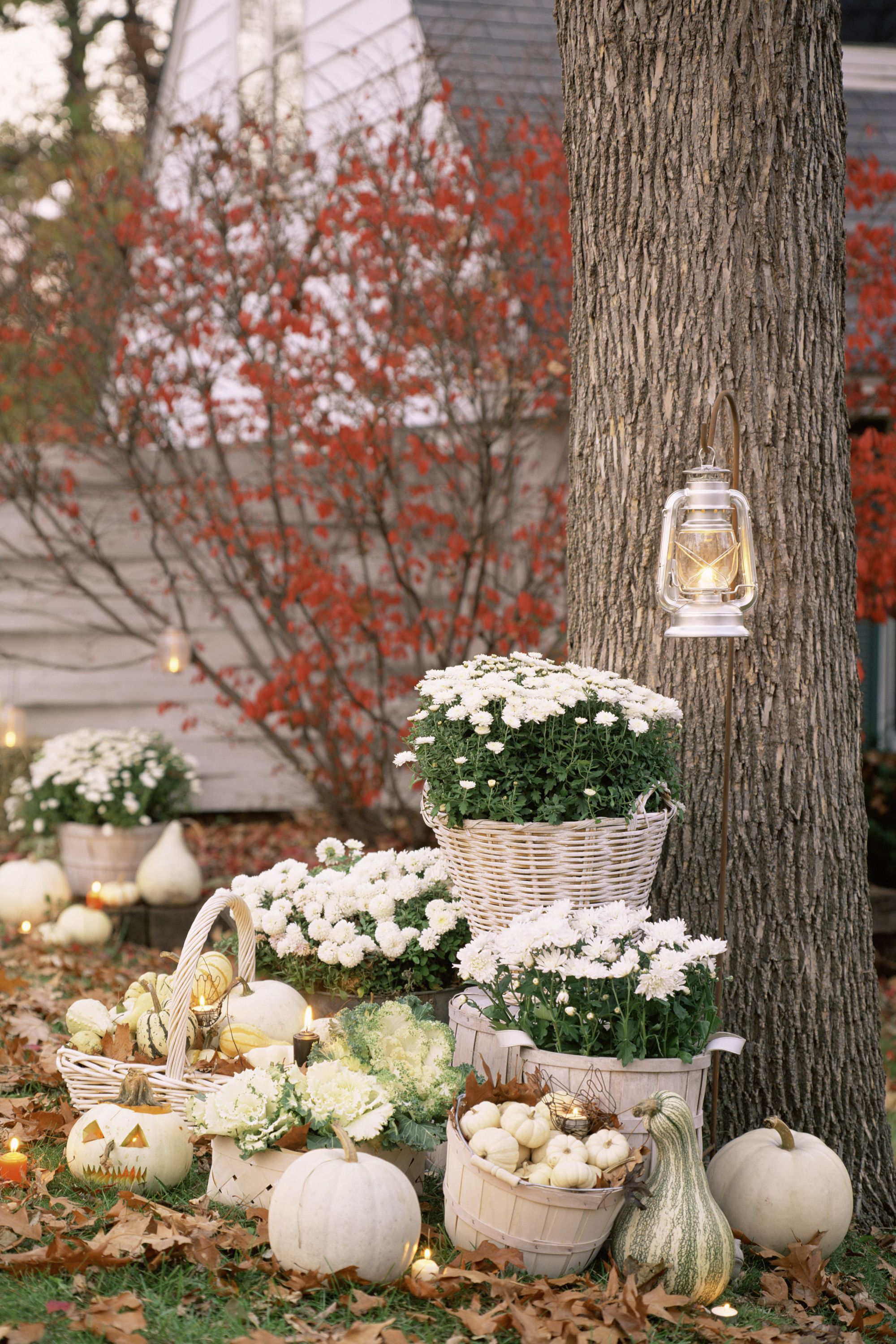 <p>Just because it is autumn doesn't mean your house needs to be orange. Decorate with white pumpkins, gourds, and mums rather than the traditional pumpkin route.</p>