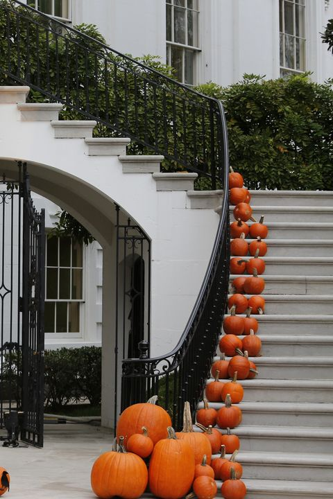 <p>Line your grand entrance with pumpkins of all different shapes and sizes. </p>
