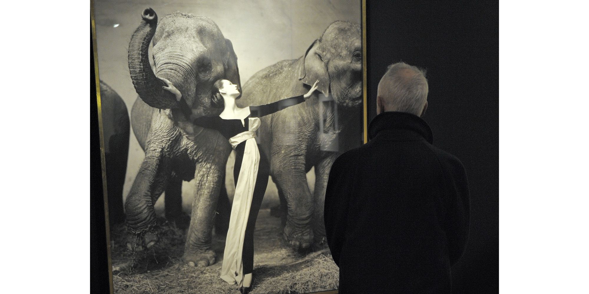 "<p>At the height of her fame in the '50s, Dovima was said to be the highest paid model in the world. She ushered in a new era of elegance, working with iconic photographers like Irving Penn and Richard Avedon to create unforgettable images. ""Dovima with Elephants,"" taken in 1955 by Richard Avedon, remains an industry legend. It has everything the future of fashion photography would seek to encompass: beauty, grace, elegance, drama, and controversy.</p>"