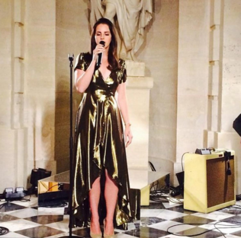 <p>Oh, and Lana Del Rey performed at their wedding reception. NBD.</p>
