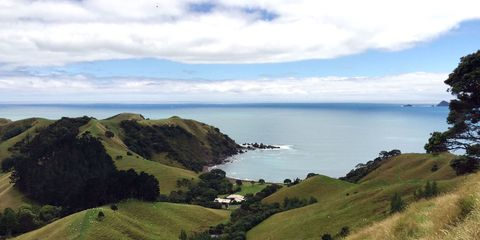 Just Back From....New Zealand