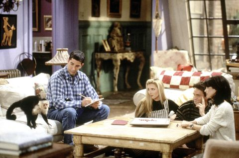 "<p>Marcel on ""Friends"" stole the spot light on the prime time sit-com.</p>"