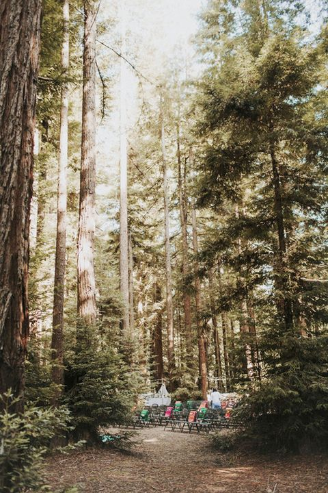 """<p>Deep within the Redwood, CA grounds, <a href=""""https://www.venuereport.com/venue/camp-navarro/"""" target=""""_blank"""">Camp Navarro</a> lies in the wine country's hidden coastal valley. The 200+ acre campground is the chic summer camp you never had, complete with luxe vacation treats and wifi. Day activities like archery and rock climbing will enthrall sports enthusiasts, while rustic detail will satisfy any nature lover.</p>"""