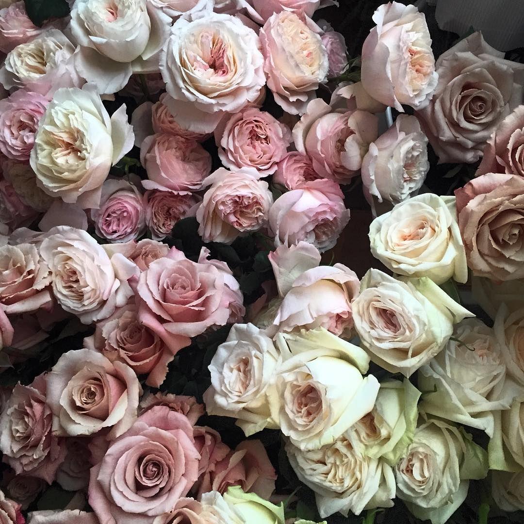 16 spring wedding flower ideas bridal bouquets and floral 16 spring wedding flower ideas bridal bouquets and floral centerpieces for a spring wedding junglespirit Choice Image