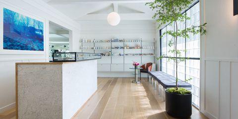 Floor, Interior design, Flowerpot, Room, Flooring, Ceiling, Wall, Light fixture, Interior design, Ceiling fixture,