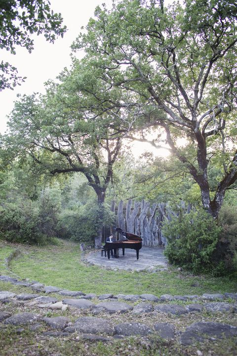 Branch, Plant, Outdoor furniture, Garden, Twig, Botany, Outdoor bench, Deciduous, Shrub, Trunk,