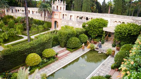 Plant, Garden, Shrub, Hedge, Water feature, Landscaping, Groundcover, Courtyard, Pond, Park,