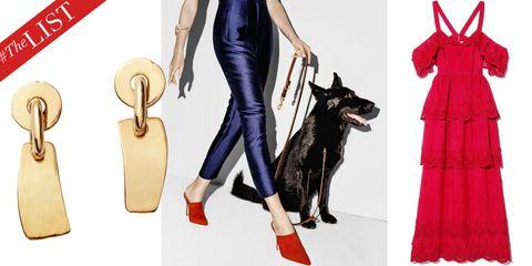 Carnivore, Dog, Dog breed, Animation, Costume, Illustration, Canidae, Costume design, Painting, Companion dog,