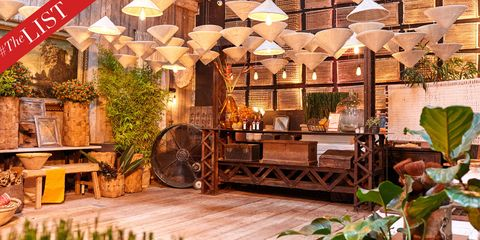 Wood, Lighting, Hardwood, Houseplant, Light fixture, Bench, Outdoor structure, Lumber, Wood stain, Wood flooring,
