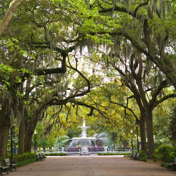 "<p><strong data-redactor-tag=""strong"" data-verified=""redactor"">How much you'll save by visiting in July:</strong> 18%</p><p>A week in Savannah this summer will cost you just a little over $1,000. The walkable city offers an abundance of historic charms—<span class=""redactor-invisible-space"" data-verified=""redactor"" data-redactor-tag=""span"" data-redactor-class=""redactor-invisible-space"">stroll on its cobblestone streets or observe its majestic buildings (there are even <a href=""https://architecturalsavannah.com/"" target=""_blank"" data-tracking-id=""recirc-text-link"">architectural tours</a> for you design lovers). Plus, a growing beer scene offers many opportunities to <a href=""http://www.savannah.com/activities/beer-scene/"" target=""_blank"" data-tracking-id=""recirc-text-link"">savor a cold craft brew</a> on a hot summer day.</span></p>"