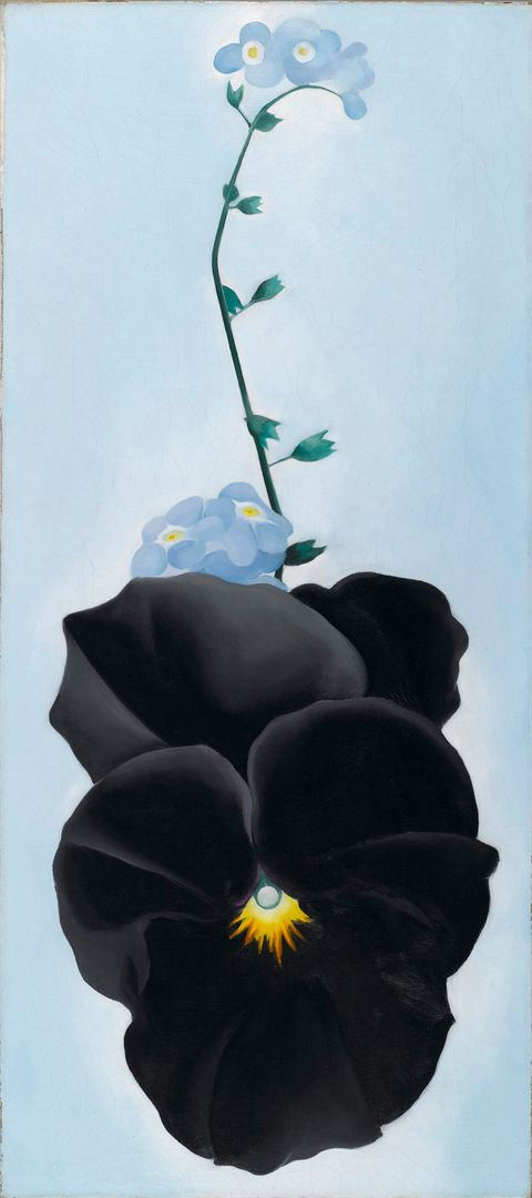 "<p>Georgia O'Keeffe (American, 1887-1986). <em data-redactor-tag=""em"" data-verified=""redactor"">Black Pansy &amp; Forget Me-Nots (Pansy)</em>, 1926. Oil on canvas, 27 1/8 x 12 1/4 in. (68.9 x 31.1 cm). Brooklyn Museum; Gift of Mrs. Alfred S. Rossin, 28.521. (Photo: Christine Gant, Brooklyn Museum).&nbsp;</p>"