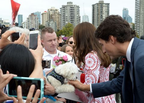 "<p>Resisting the urge to turn around and pet the same dog as Justin Trudeau at the Kitsilano Coast Guard station&nbsp;in Vancouve<span class=""redactor-invisible-space"" data-verified=""redactor"" data-redactor-tag=""span"" data-redactor-class=""redactor-invisible-space"">r.</span></p>"