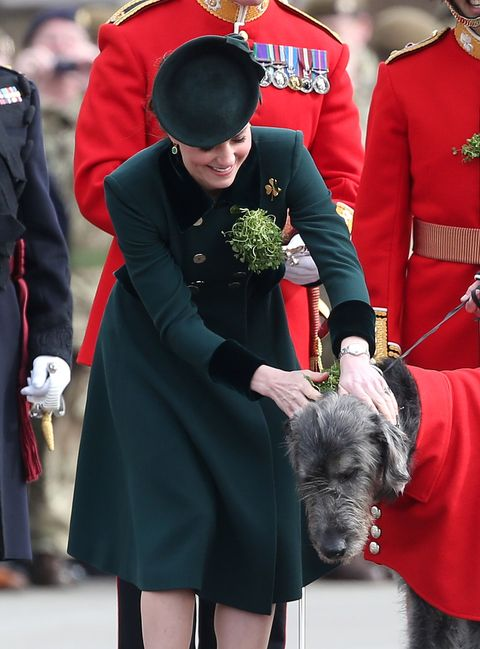 "<p>Greeting the&nbsp;First&nbsp;Battalion Irish Guardsmen<span class=""redactor-invisible-space"" data-redactor-tag=""span"" data-redactor-class=""redactor-invisible-space"" data-verified=""redactor"">'s mascot, an Irish Wolfhound named</span><span class=""redactor-invisible-space"" data-verified=""redactor"" data-redactor-tag=""span"" data-redactor-class=""redactor-invisible-space""> Domhnall<span class=""redactor-invisible-space"" data-verified=""redactor"" data-redactor-tag=""span"" data-redactor-class=""redactor-invisible-space"">,</span>&nbsp;during the annual Irish Guards St Patrick's Day Parade in London<span class=""redactor-invisible-space"" data-verified=""redactor"" data-redactor-tag=""span"" data-redactor-class=""redactor-invisible-space"">.</span></span></p>"