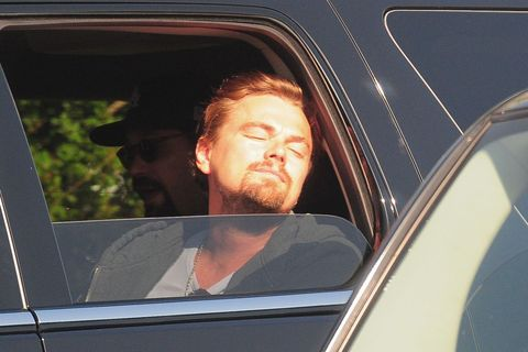 <p>That time Leo morphed into a golden retriever puppy and stuck his head out the car window. </p>