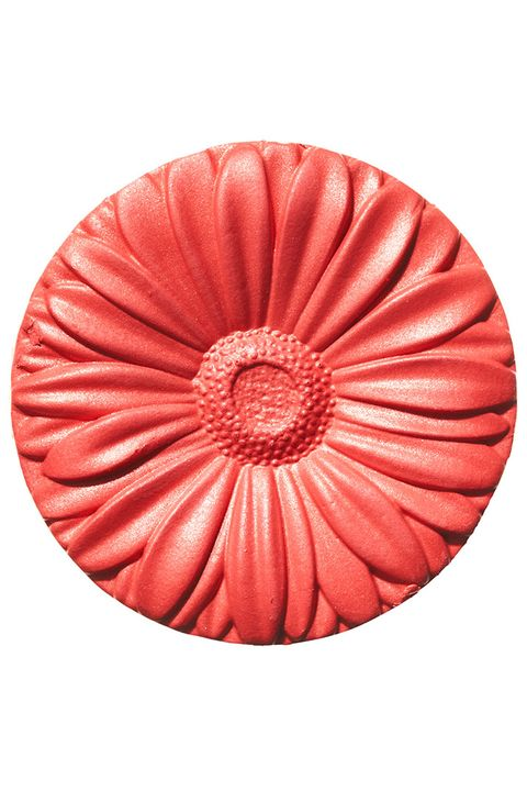 Red, Orange, Marine invertebrates, Peach, Circle, Coquelicot, Natural material, Cephalopod, Molluscs, Sphere,