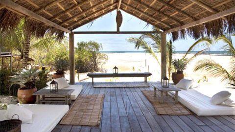 Wood, Property, Real estate, Resort, Furniture, Hardwood, Flowerpot, Roof, Shade, Arecales,
