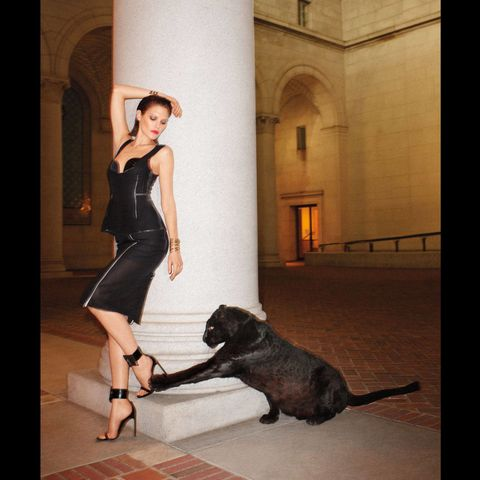 Human, Dog breed, Dog, Carnivore, Dress, Floor, Mammal, High heels, Collar, Sandal,