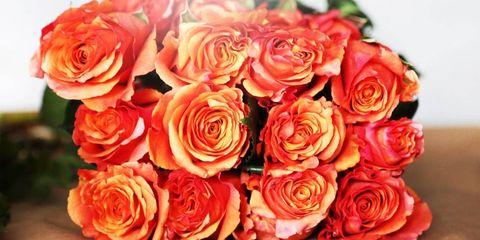 Fall flower arrangements fall flower arranging with la fleur garcon image mightylinksfo